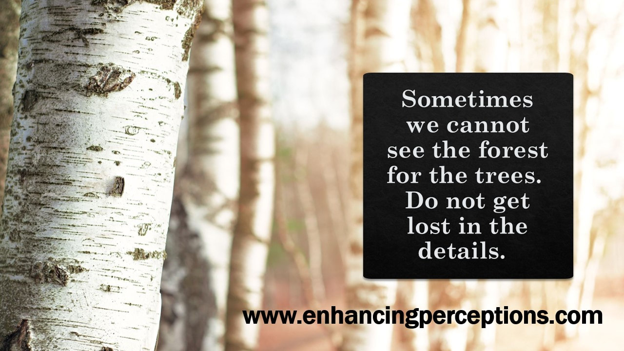 Sometimes we cannot see the forest for the trees. Do not get lost in the details. ​See the big picture. Are you worried about something today that will not matter in a week, in a month, in a year? Enhancing Perceptions
